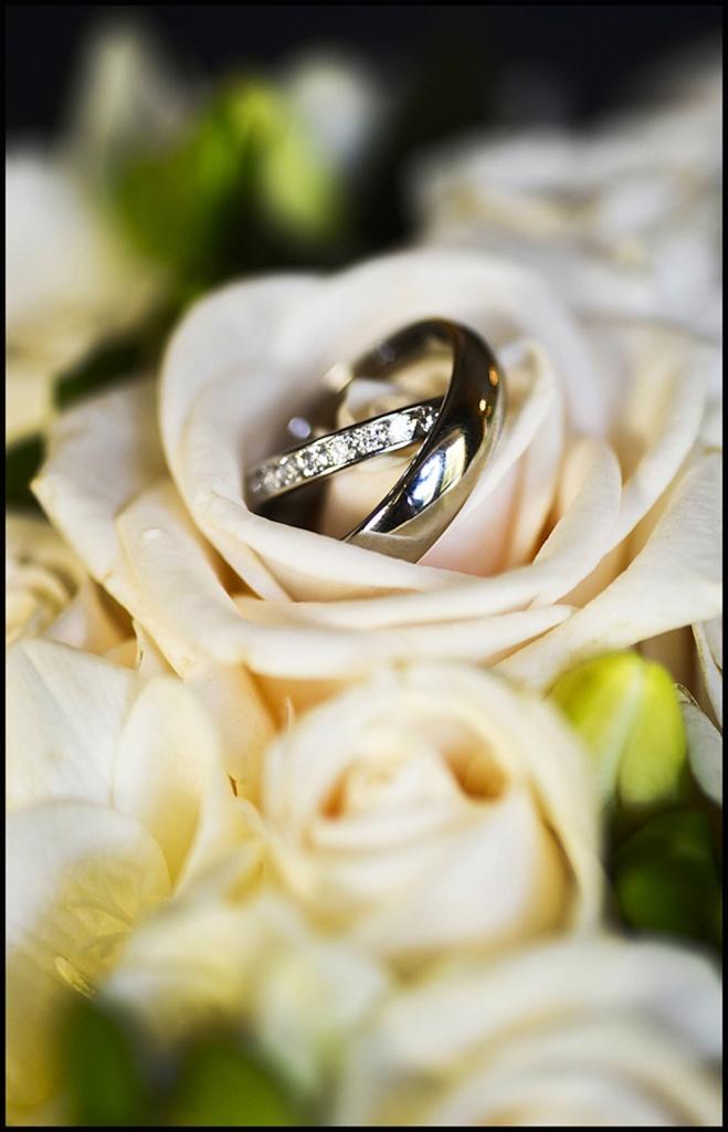 wedding-ss-2015-23