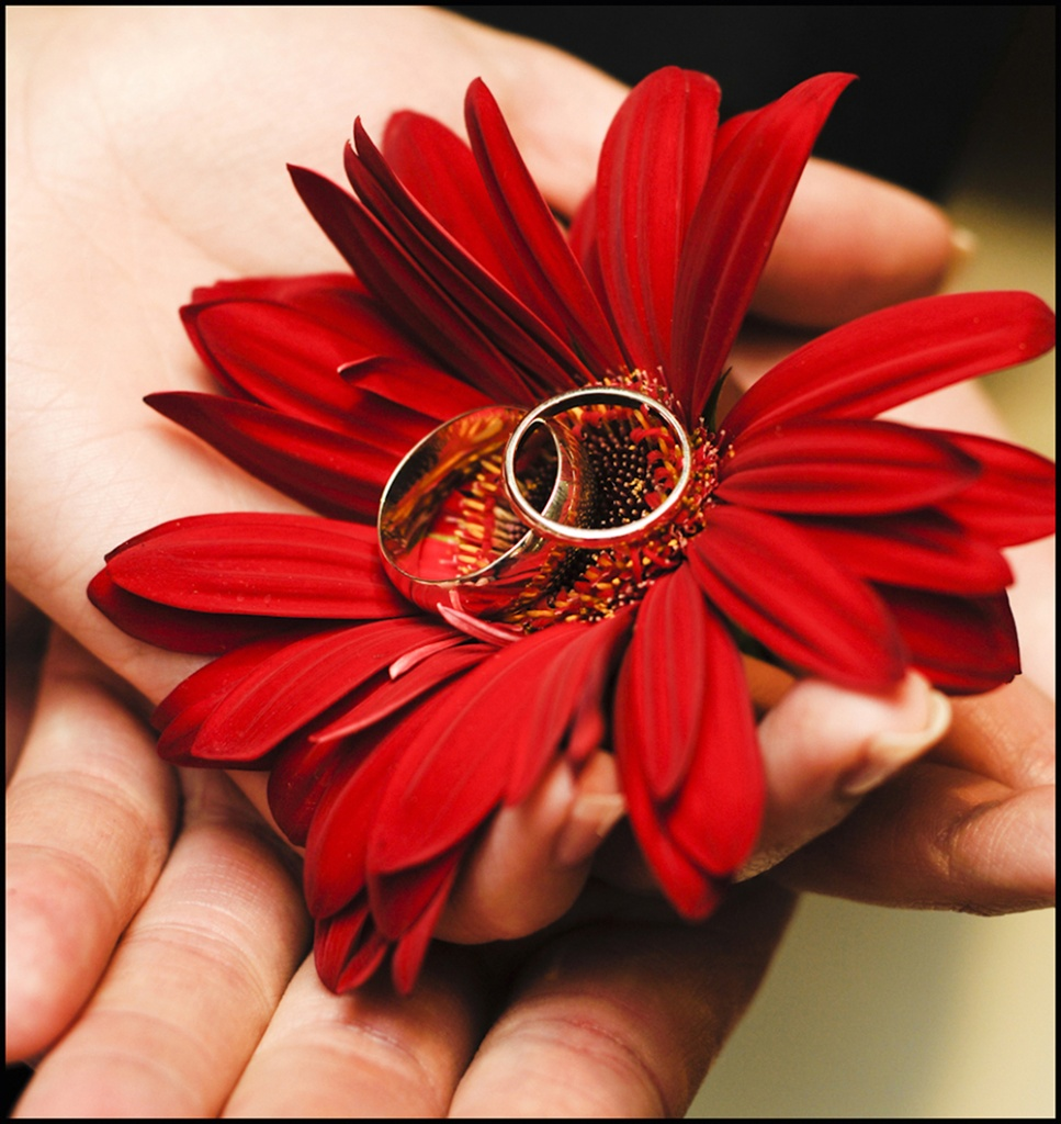 wedding-ss-2015-36